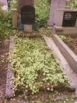 Prodám hrob na Olšanském hřbitově